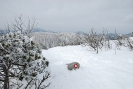 8. Zimski pohod na Golak (1.3.2015)