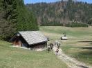 Mala Osojnica ter planine nad Bohinjsko Belo in Bledom_11