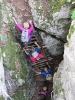 Mala Osojnica ter planine nad Bohinjsko Belo in Bledom_6