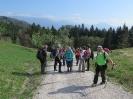 Mala Osojnica ter planine nad Bohinjsko Belo in Bledom_8