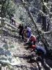 Čiščenje planinske poti na Globočak (14.6.2014)