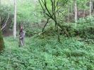 Čiščenje poti po dolini reke Idrije_3