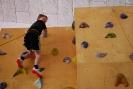 Mladinski odsek - Dan športnega plezanja v telovadnici OŠ Deskle (7.5.2016)