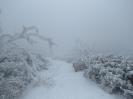 Snežnik_9